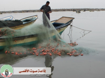 http://sahabatalaqsha.com/nws/wp-content/uploads/2009/08/Perahu-perahu-Nelayan-Gaza-Dihancurkan-Israel-646.JPEG