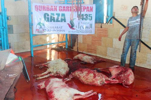 Darah dan dagingnya tetap di bumi, mutiara-mutiara Taqwanya melesat ke Arasy Allah. Foto: Sahabat Al-Aqsha/Al-Sarraa Foundation
