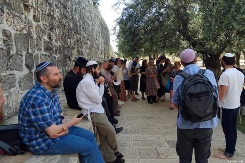 Gerombolan pemukim ilegal Yahudi menyerbu Masjid Al-Aqsha pada hari pertama Ramadhan, 6 Mei 2019. Foto: Palestine Post 24