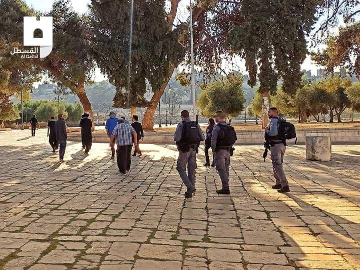 Para pemukim ilegal Yahudi zionis 'Israel' menerobos masuk Masjidil Aqsha, Selasa (8/6/2021). @AlQastalps