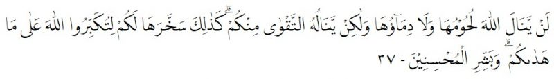 Berita 2294 (25 Juli 2021).jpg - Laporan QurbanGarisDepan1442 - QS Al-Hajj