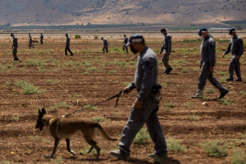 Serdadu zionis terus melakukan pencarian enam tawanan Palestina yang berhasil lolos dari Penjara Gilboa pada 6 September 2021. (Amir Levy /Getty Images)